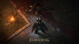 скриншот ELDEN RING 1