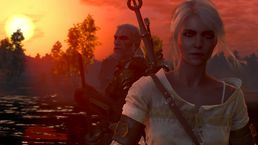скриншот The Witcher 3: Wild Hunt 9