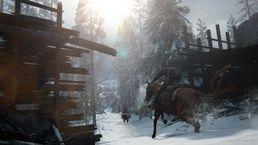 скриншот The Last of Us Part II 1