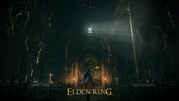 скриншот ELDEN RING 2