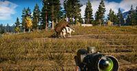 скриншот Far Cry 5 2