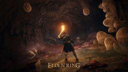 скриншот ELDEN RING 5