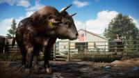 скриншот Far Cry 5 4