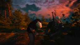 скриншот The Witcher 3: Wild Hunt 0